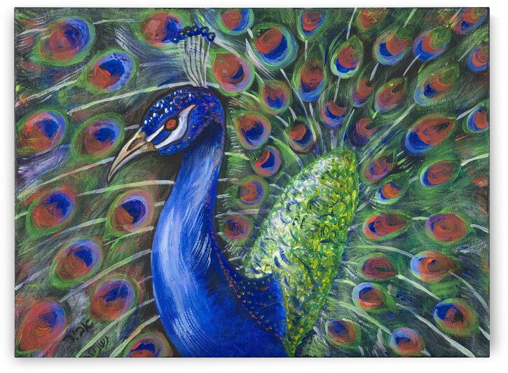 RA 034 - פריחת הטווס - Peacock blossom by Avi Romano Art