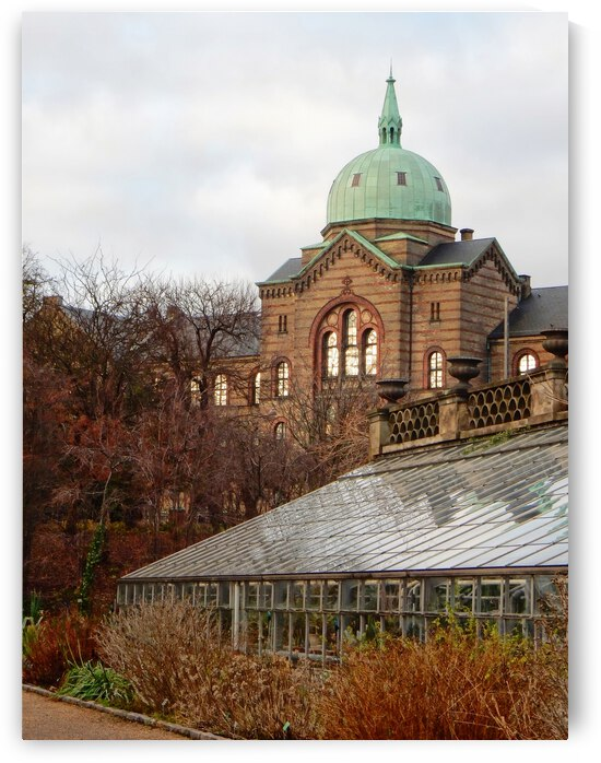 Overlooking the Botanical Garden Copenhagen by Dorothy Berry-Lound