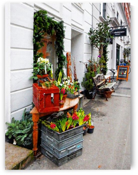 Shopping Street Copenhagen by Dorothy Berry-Lound