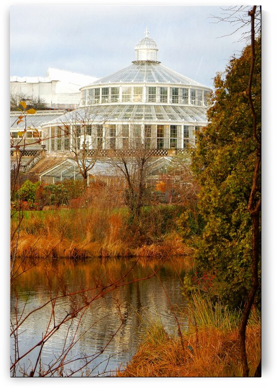 View to the Palm House Copenhagen by Dorothy Berry-Lound