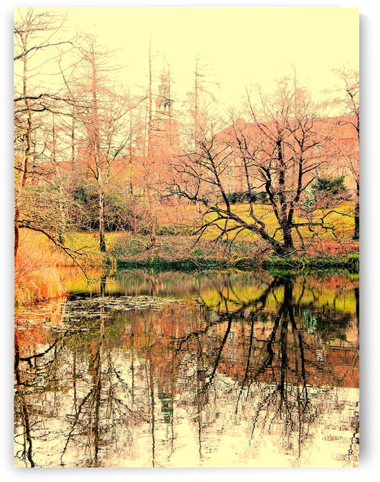 The Winter Lake by Dorothy Berry-Lound