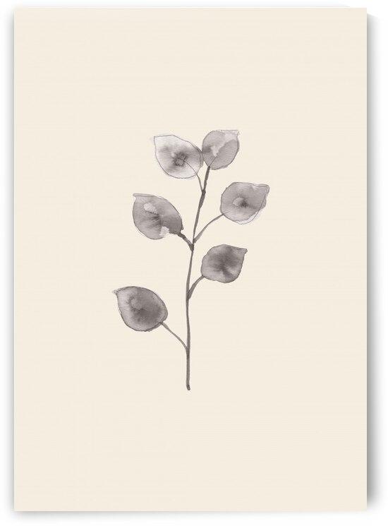 Eucalyptus Twig by 1x