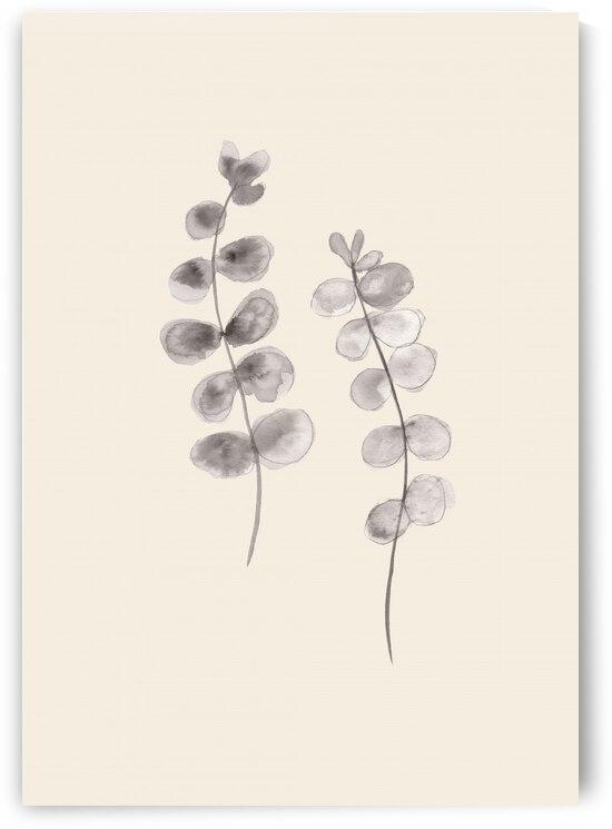 Eucalyptus Twigs by 1x