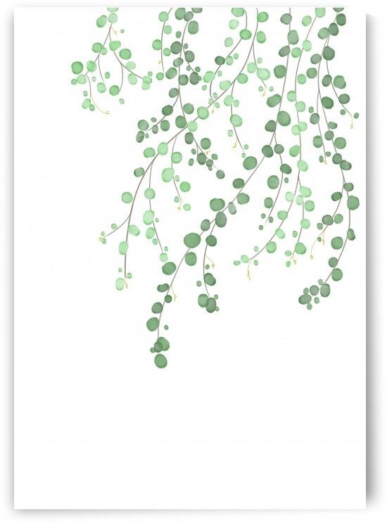 Birch Tree by 1x
