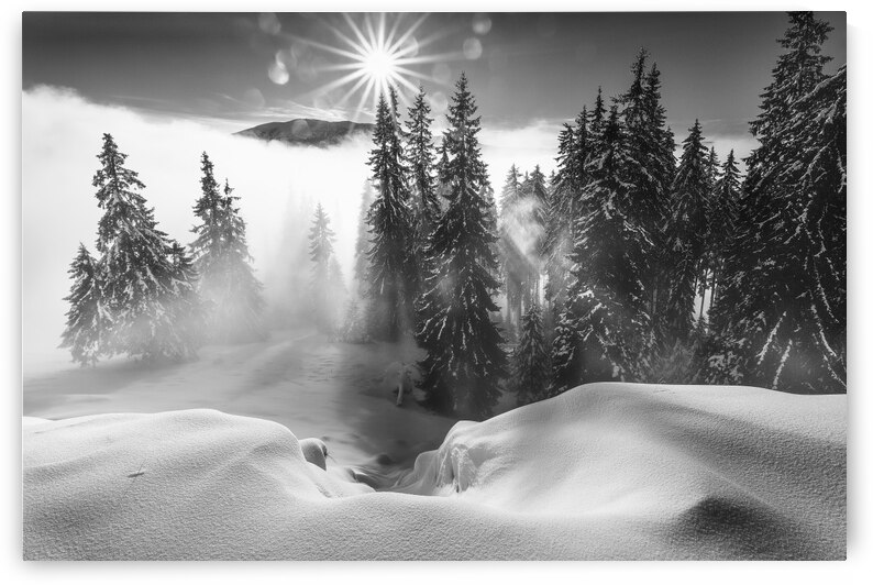 A Winter Tale ! by 1x