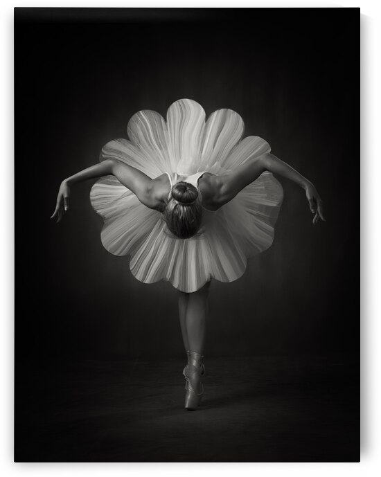 Floral Ballet by 1x