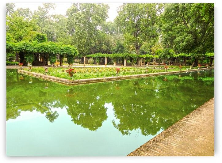 Lotos Pond - Estanque de Los Lotos - Parque de Maria Luisa - Seville Spain by 1North