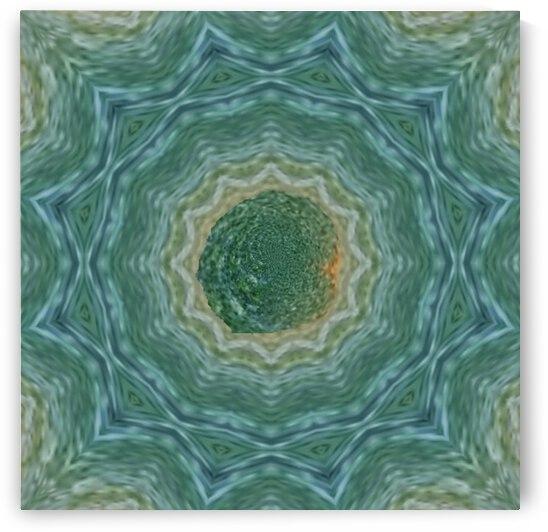 Forest Mandala by Jenn Rosner