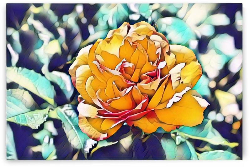 Rose in Yellow by Barbara Treen