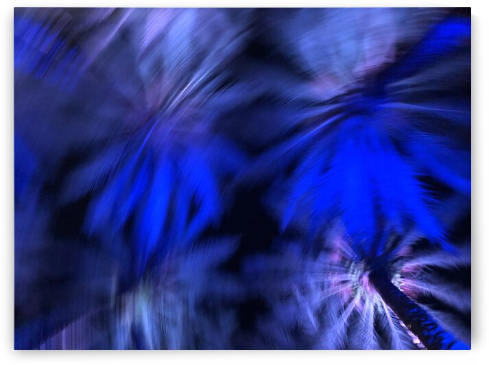 Electric Palm - Blue Spin by The Moment Rocks