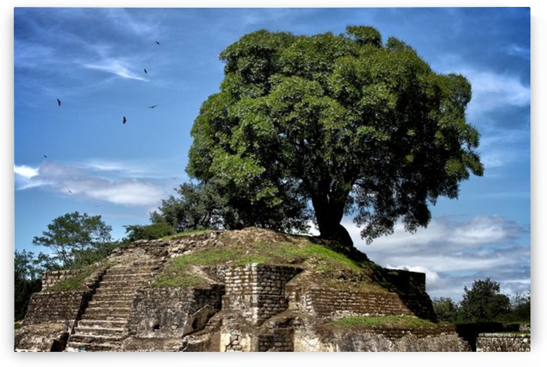 Mayan Moon Temple by AIReStudios
