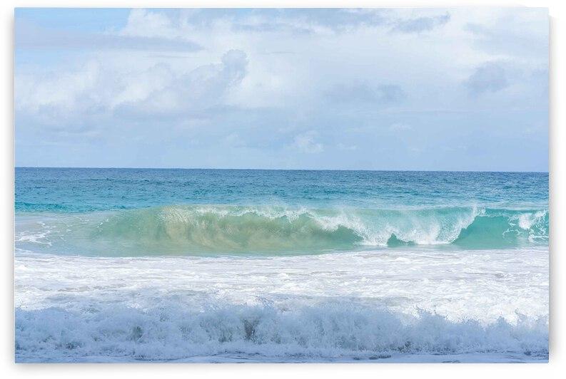 Aqua Hawaiian Waves by BCALI