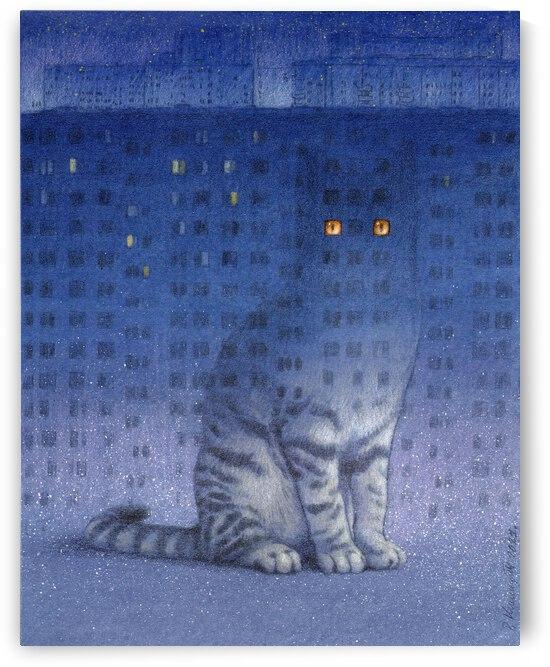 insomnia by Pawel Kuczynski