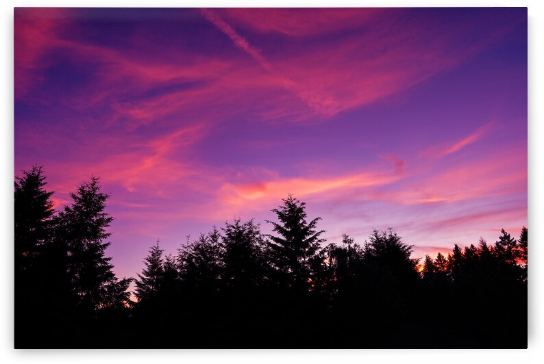 Summer Sunset Pacific Northwest United States by 1North