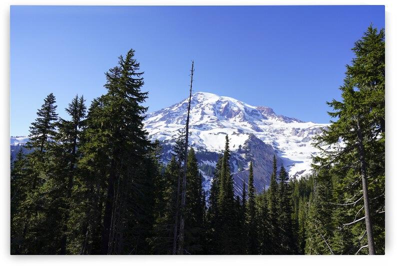 Mount Rainier Pacific Northwest Washington State by 1North