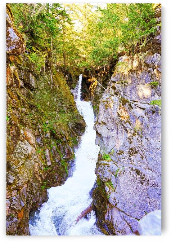Christine Falls in the Sunlight Mount Rainier Pacific Northwest Washington by 24