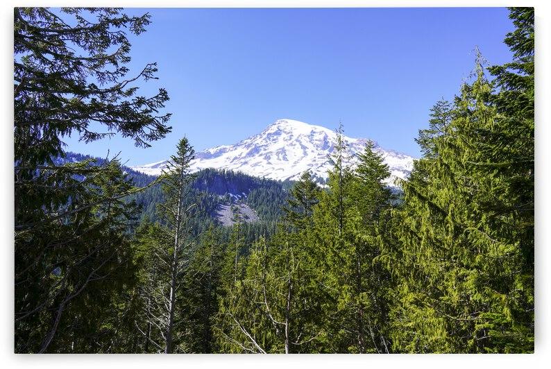 Mighty Mount Rainier Pacific Northwest Washington by 24