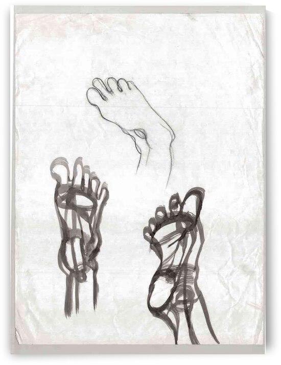 feet study by Lauren V