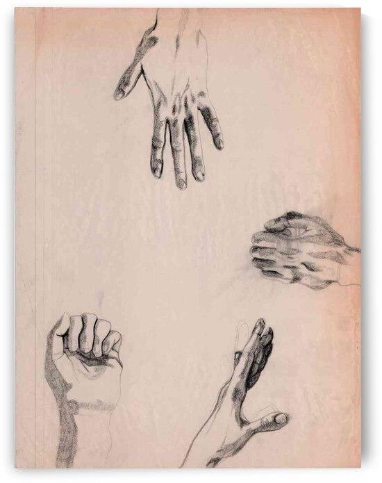 Hands Study 4 by Lauren V