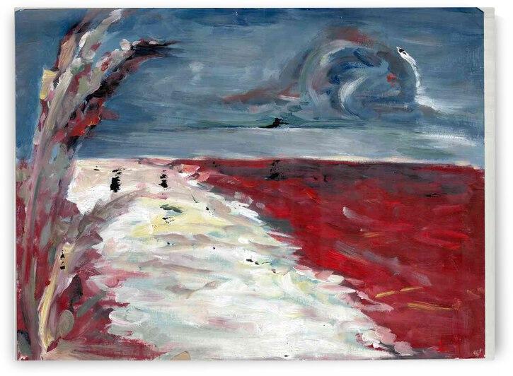 Red Beach by Lauren V