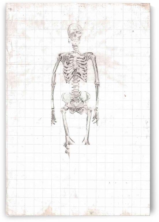 Skeleton Grid by Lauren V