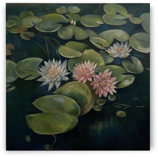 Water lilies in bloom by Cene