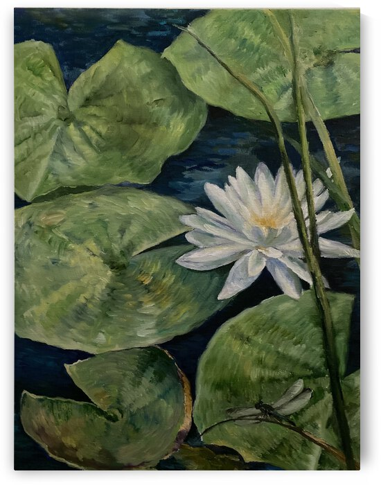 Water lily with dragon fly by Cene