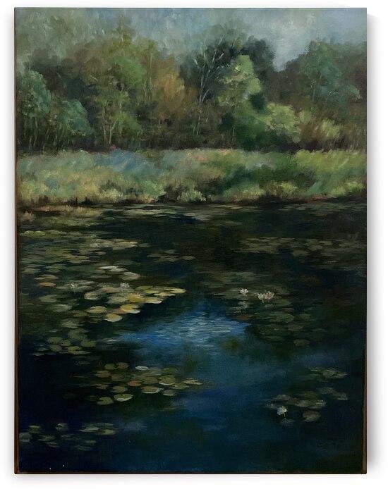 Calhoun pond by Cene