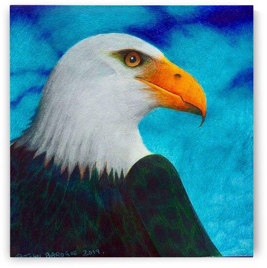 Bald Eagle by John Baroque