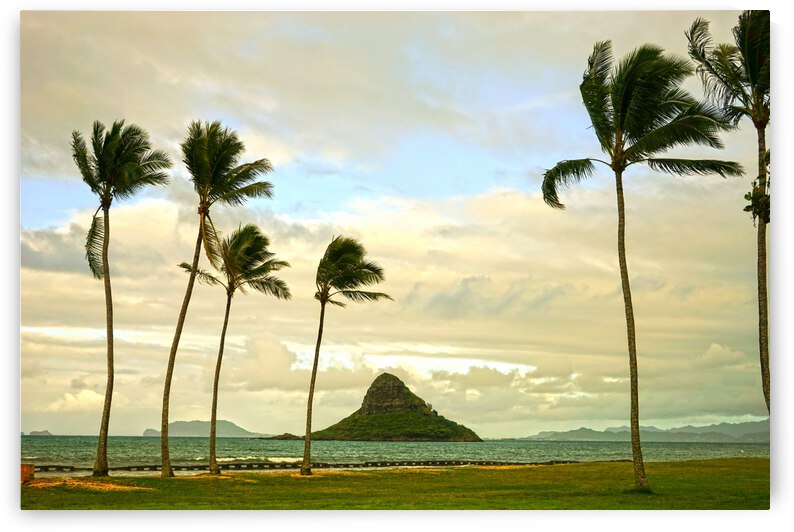 The Island of Mokoli  i from Oahu at Sunset by 1North