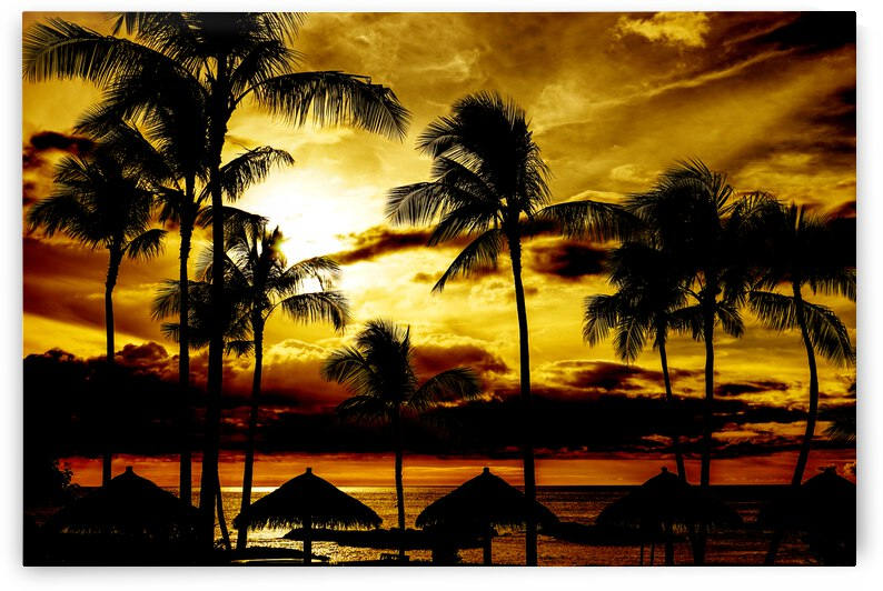 Sunset in the Tropics by 360 Studios
