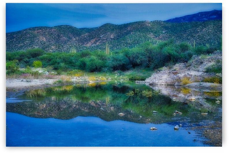 Tanque Verde Creek 3 by Eduardo Palazuelos
