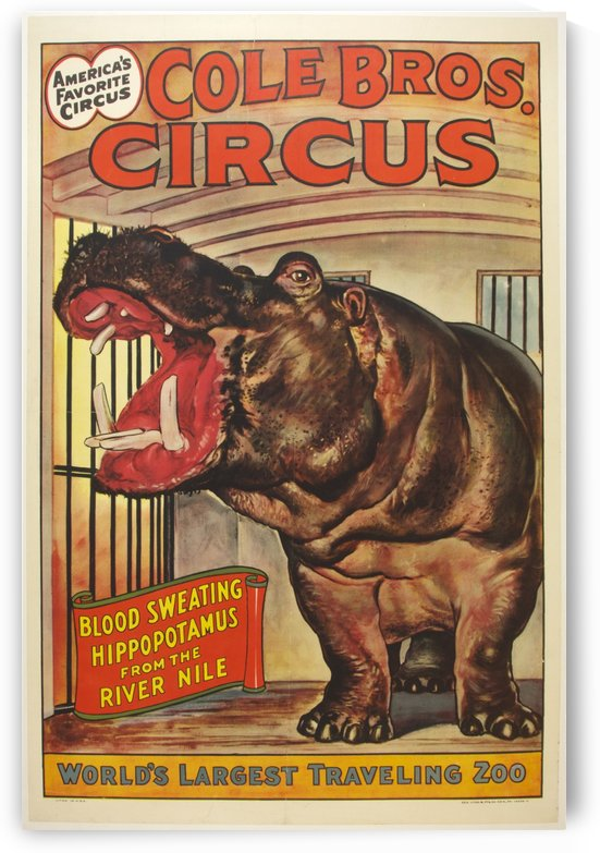 Cole Bros Circus Hippo Poster by VINTAGE POSTER