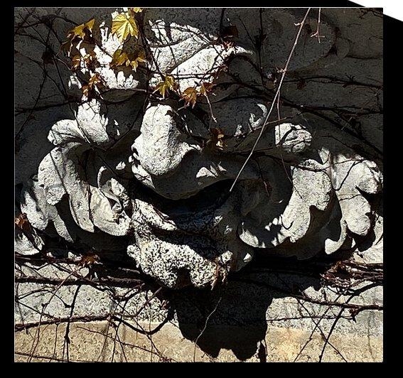 Gargoyle 052021 by BotanicalArt ca