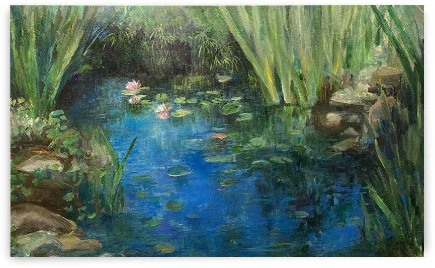 Koi pond by Cene