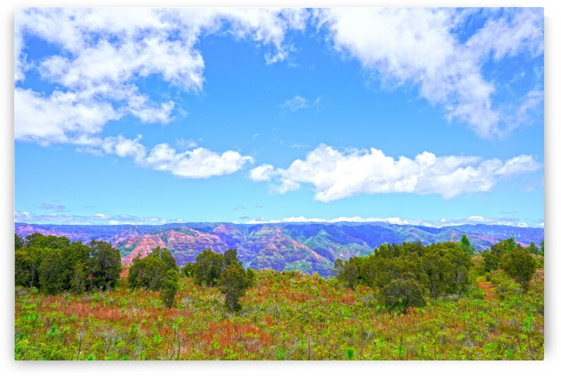 Beautiful View to Distant Waipoo Falls in Waimea Canyon on the Island of Kauai by 360 Studios