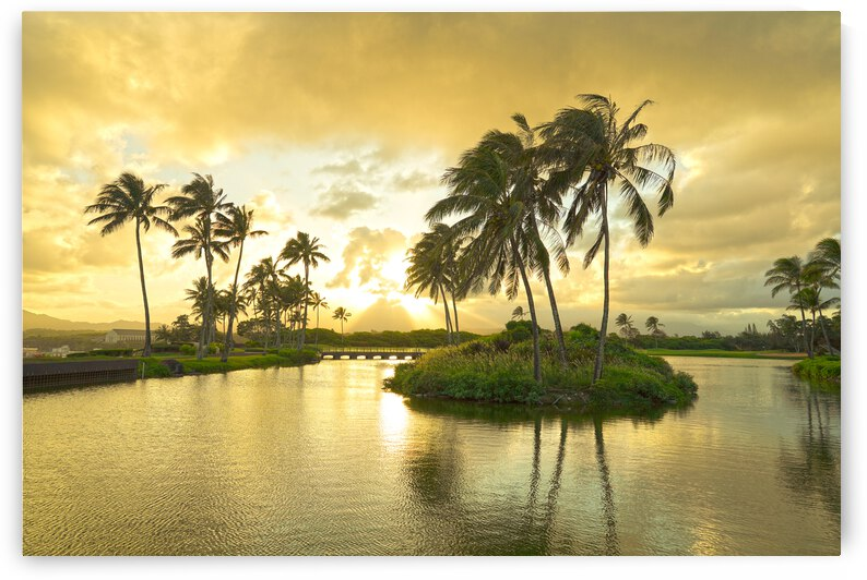 Shadows and Light as the Sun Sets in Kauai 2 of 2 by 1North