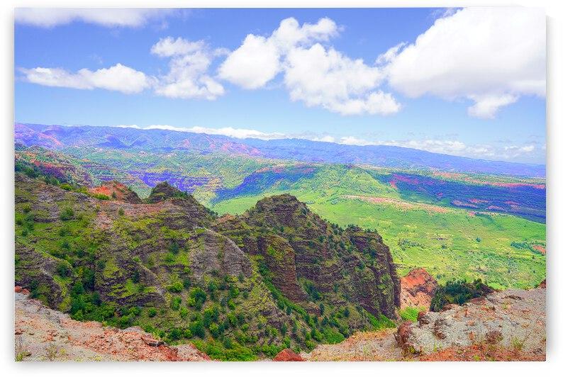Waimea Canyon Area in the Puu Ka Pele Forest Reserve on the Island of Kauai Hawaii by 24