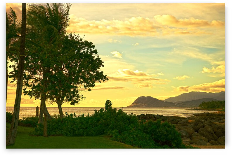 Sunset over the Bay Oahu Hawaii by 24