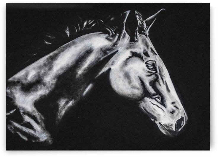 dark horse by abhi 2 orig by Abhijeet Shrivastava