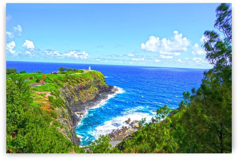 Kilauea Lighthouse in Spring on the Island of Kauai by 360 Studios
