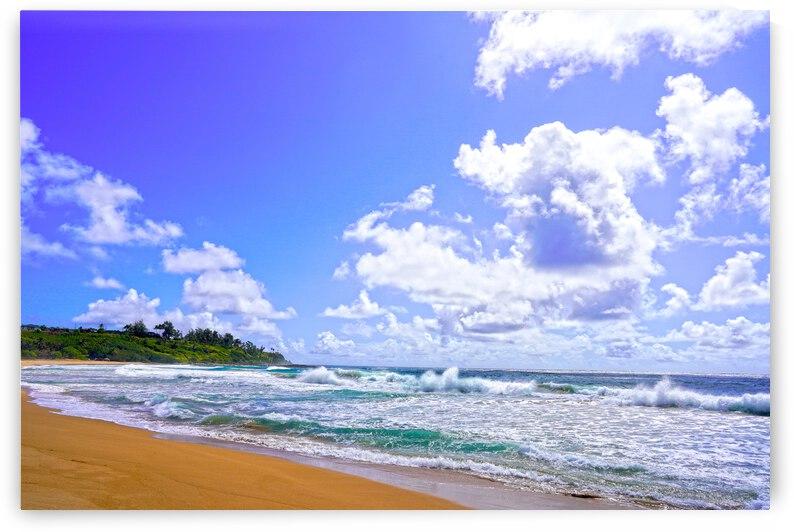 Wild Day at Wailua Beach on the Island of Kauai by 360 Studios