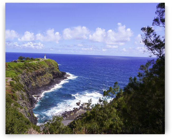 Spring at Kilauea Lighthouse on the Island of Kauai by 24