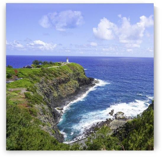 Kilauea Lighthouse on the Island of Kauai Square by 24
