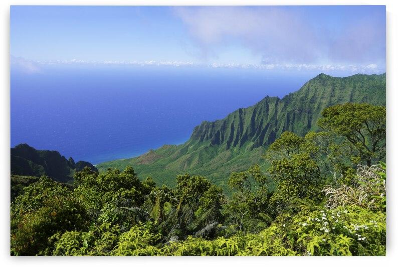 Blue Skies Puu O Kila Lookout Kohala Mountains on the Island of Kauai in Hawaii by 360 Studios