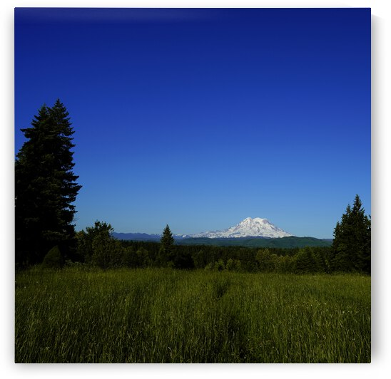 Mount Rainier at Sunset Pacific Northwest Washington State Square by 1North