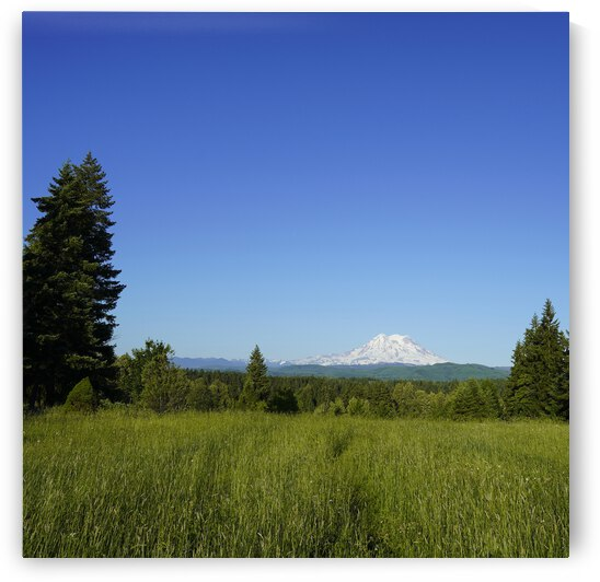 Mount Rainier and the Cascades Mountains Pacific Northwest Washington Square by 360 Studios