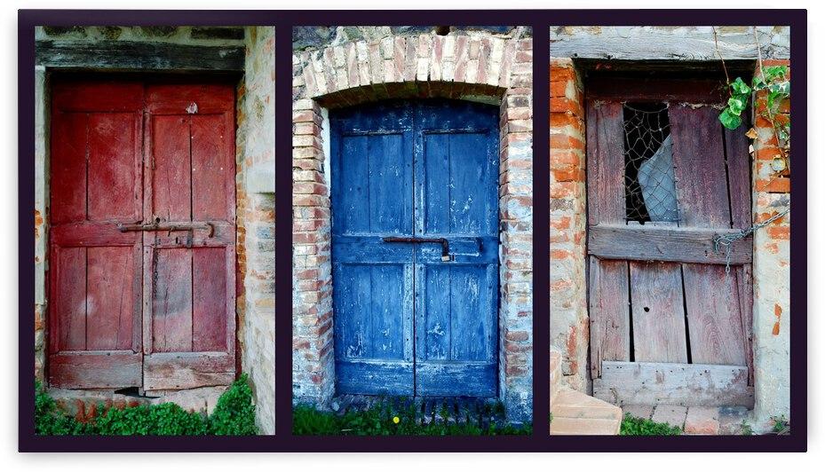 Animal Room Doors by Dorothy Berry-Lound
