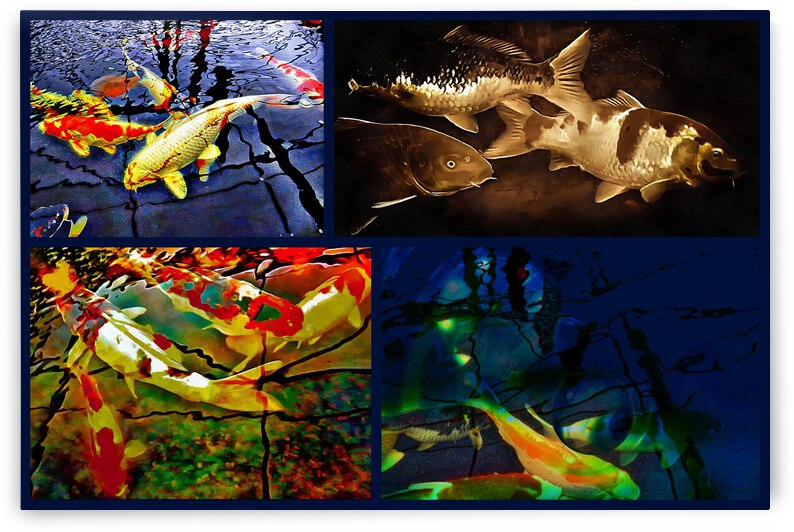 Koi Carp Collage by Dorothy Berry-Lound