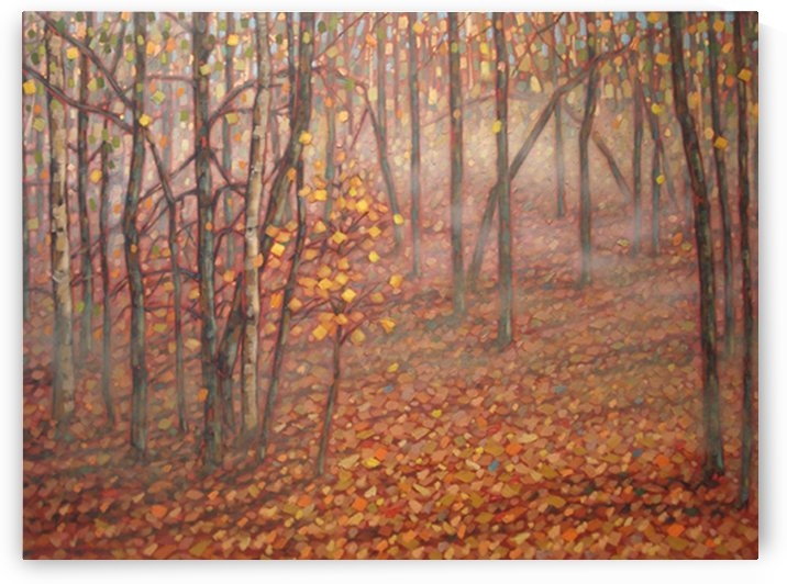 Early Fall Morning, Bancroft Area Ontario by peter crighton